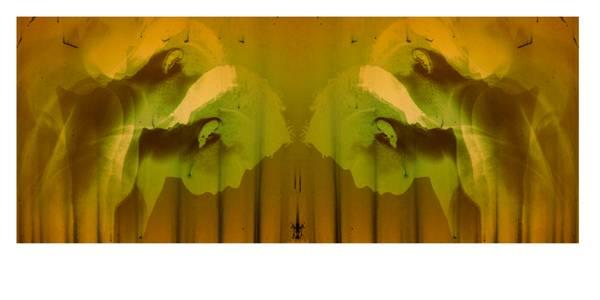 Bilde av Portrett I